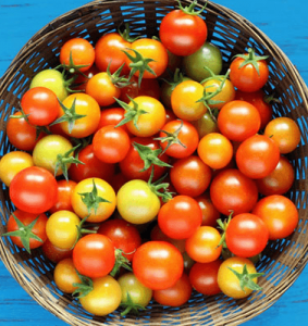 Cherry Tomato Basket